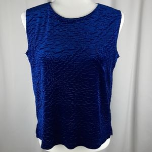 Picadilly Blue Velvet top